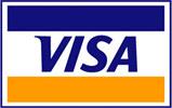 metodo di pagamento carta di credito VISA